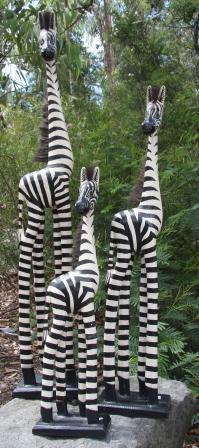Zebra - 1m