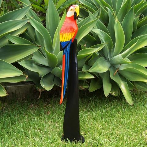 Parrot 80cm