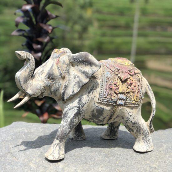 MOROCCO ELEPHANT